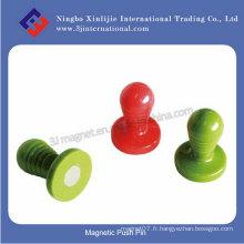 Pin à poussière magnétique en plastique avec aimant NdFeB