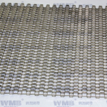 Special Flat Wire Mesh Belt with ISO9001