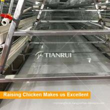 Sistema de limpeza por ordenha de estrume de frango