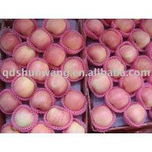 yantai grade A fresh red fuji apple