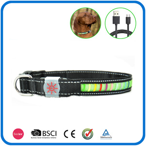 Colliers de chien rechargeables Bright Night