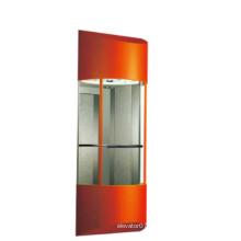 Fjzy Панорамным Дешевые Лифт-Ascensor2045