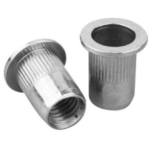 Rivet nut flat head rivet nut  zinc plating Carbon steel stainless steel aluminum Flat head full hex body rivet nut