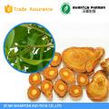 Natural Resveratrol ;Grape Skin Extract trans resveratrol Polyphenols polygonum cuspidatum extract
