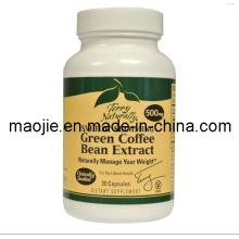 Perder peso de extrato de feijão de café verde da cápsula