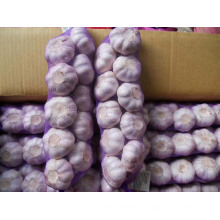 Productos de ajo de buena calidad Trenzas de ajo