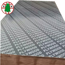 China for Black Poplar Core Film Faced Plywood 16mm Construction Plywood for Sales supply to Vietnam Importers