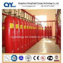 Cylindre de gaz CO2 à combustion artificielle sans soudure avec différentes capacités