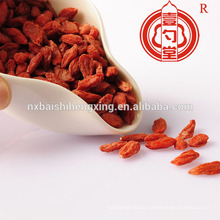 Dried goji berries wholesale distributor offer free samples goji berry