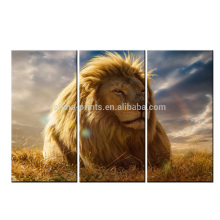 Lion In The Sun Modern Print / Picture Canvas Art / Lion Painting Print On Canvas