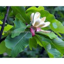 Magnolia Bark Extract/50%~98%Mognolol;50%~98%Honokiol