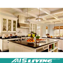 Muebles del gabinete de cocina del estilo de moda y elegante (AIS-K974)
