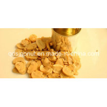 Canned Mushroom The Best Discount and Best Quality for Hot Sales Season