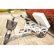 Triciclo eléctrico multifuncional de moda