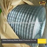 Galvanized welded wire mesh mesh size 6.4mmx6.4mm