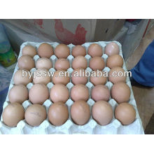 Chicken/ Duck/ Quail Egg Carton