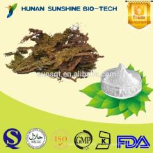 Extracto de hierba 100% natural de la salud alimentaria huperzia serrata polvo 98% Huperzine A con el tratamiento de las hemorroides y la función de heridas