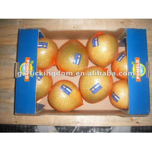 Hot sale Fresh honey pomelo