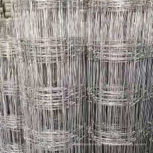 China chain link mesh fence/sport field mesh fence and gate(Powder coated&free sample