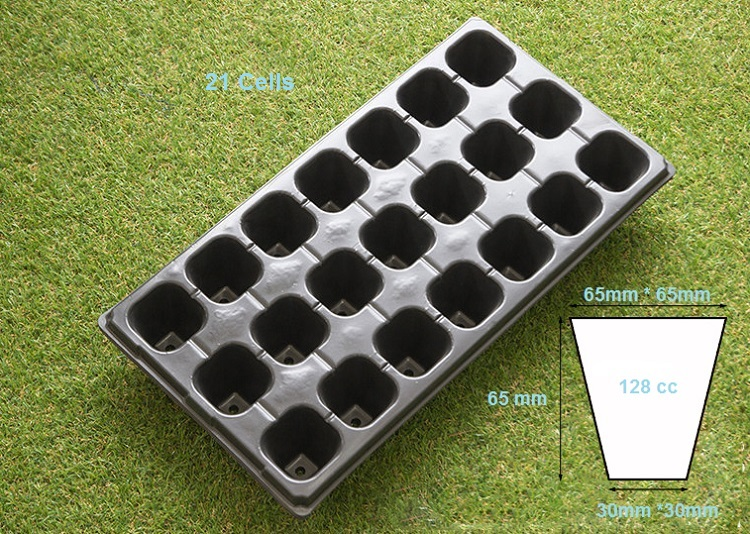 seedling tray (2)