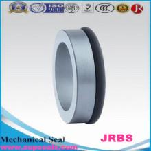 Mechanische Kohlegraphitdichtung Rbsic und Ssic Ring