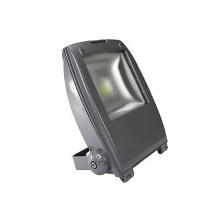 ES-20W Low voltage LED Landscape Lighting