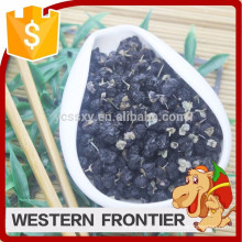Chine QingHai type de culture organique Black goji berry