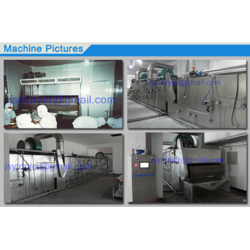 Conveyor Belt dryer para coco
