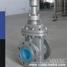 "2""~40"" Through Conduit Gate Valve"