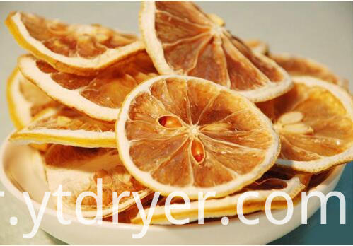 Lemon Slice Dry