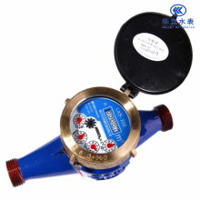 Vane Wheel Liquid Sealed Water Meter (DN15-DN40 LXS-15E ~ LXS-40E)