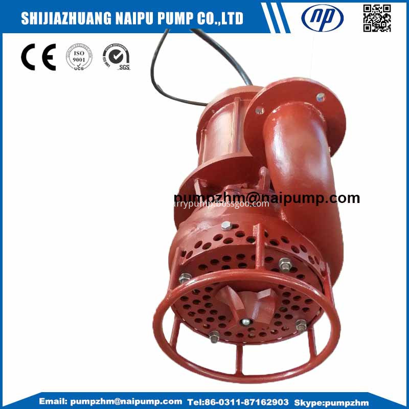 009 Submersible slurry pump