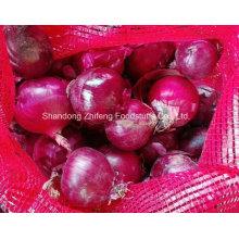 2016 New Crop Fresh Red Onion with High Quality
