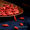 Can Pack Goji Berries 2018 New Harvest