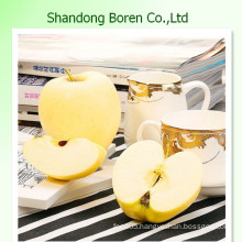 Fresh Golden Yummy Apple From China