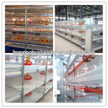 good quality broiler floor raising system