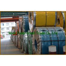 Bobina de acero laminado en frío DIN 310S (845)