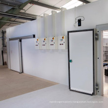 CACR-3 CA Controlled Atmosphere Cold Room for Fruits for Sale