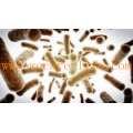 Allergen free Bifidobacterium Longum freeze dried powder