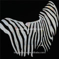 CANOSA white seashell zebra design Wall Picture with metal frame