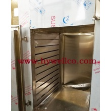 Ginger Block Hot Air Circulating Oven