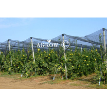 Agtek+ Gable Orchard Anti-Hail Netting System