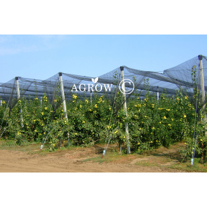 Agtek + Gable Orchard Anti-Hail Netting System