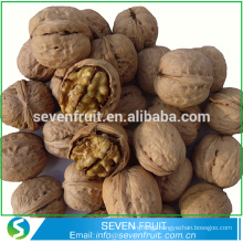 Chinese good quality walnut in shell price for wholesale