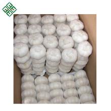 2018 Ernte beste Qualität China Herkunft reinen weißen Knoblauch