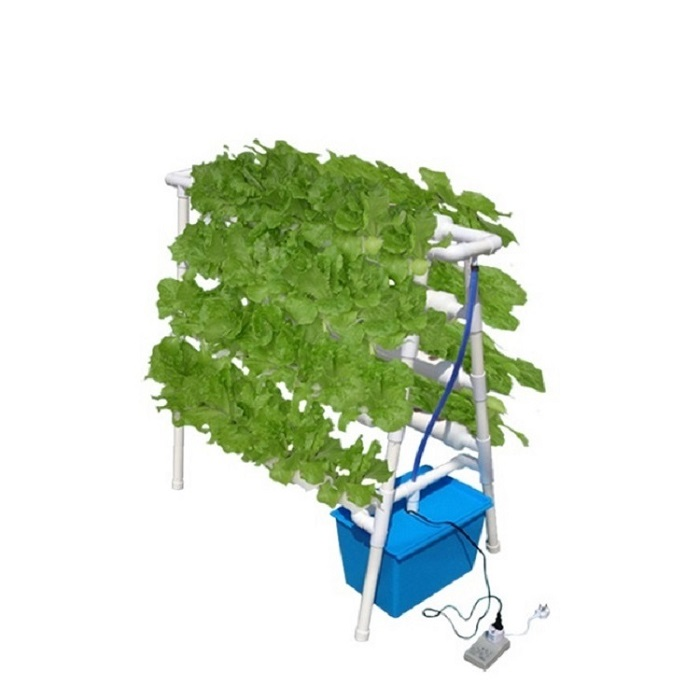 DIY Home Indoor Hydroponic Growing System