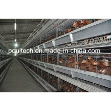 2016 New Layer Chicken Cage System