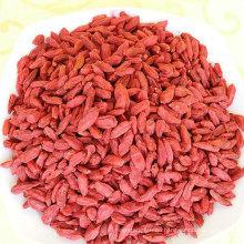 New crop low pesticide China Premium Quality Natural Dried Goji Red Goji Berry