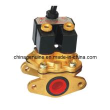 Zcheng Normal geschlossen, Membran Industrieventil Magnetventil Zcmsf-20A