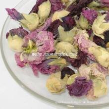 Té de flores de dragón violeta